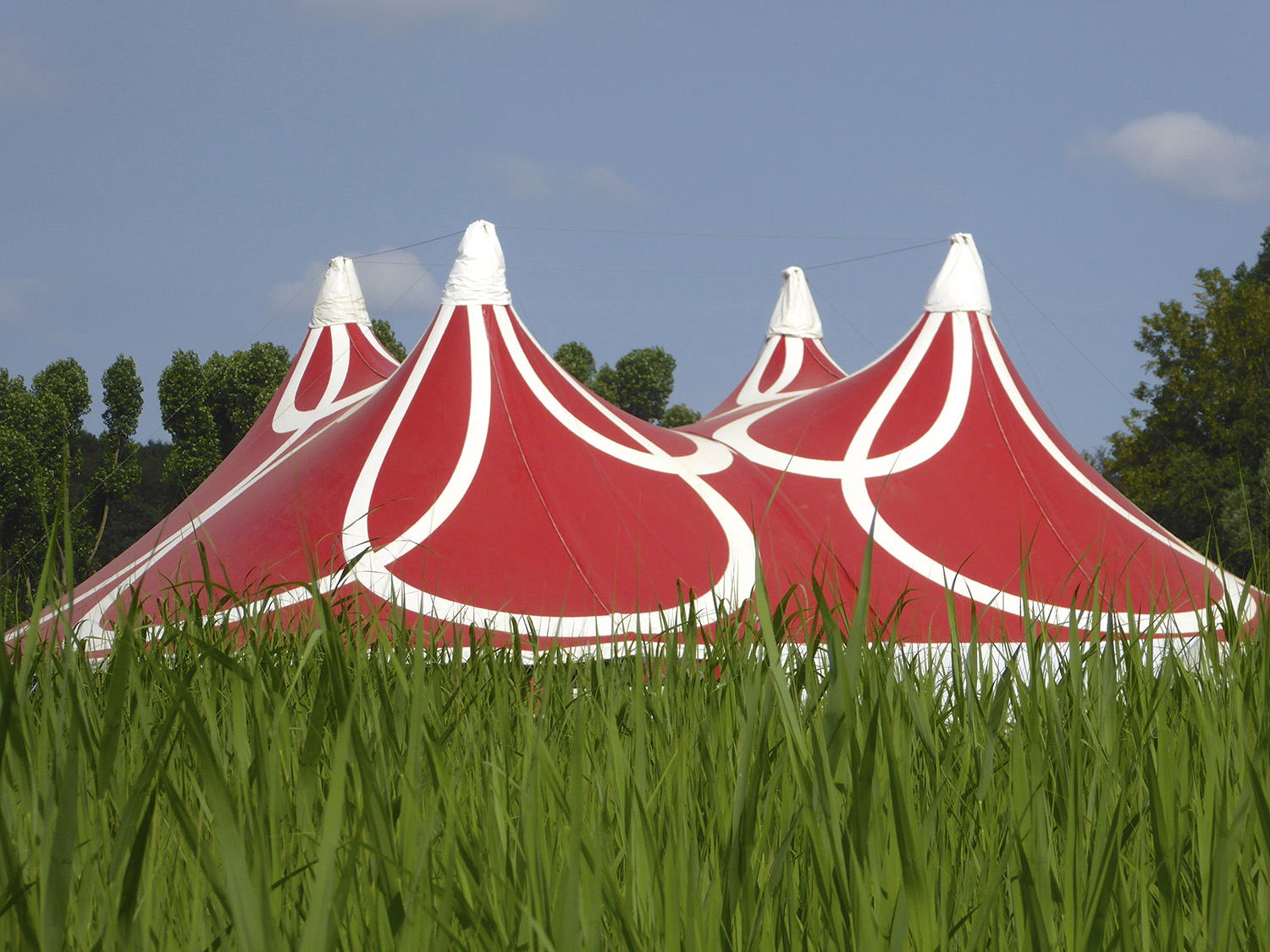 Festivals: surrealisme in het Amsterdamse Bos