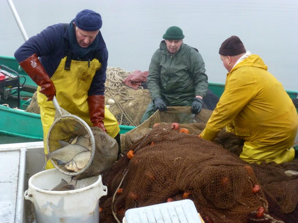 Eens per jaar wordt het overschot aan vis uit de Bosbaan gehaald