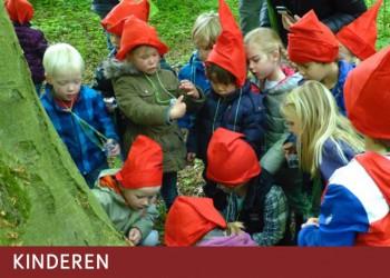 Vrienden van het Amsterdamse Bos kinderactiviteiten