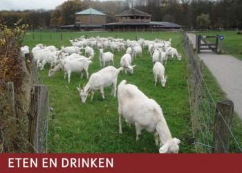 Vrienden van het Amsterdamse Bos linken-eten-drinken