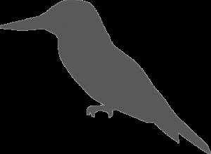 Logo Vrienden van het Amsterdamse Bos watermerk