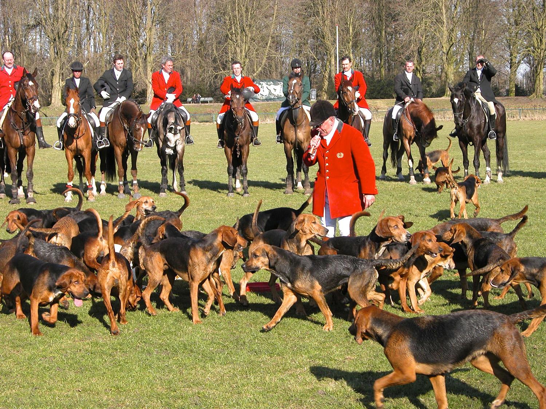 Honden, paarden en ruiters vol verwachting voor de Slipjacht