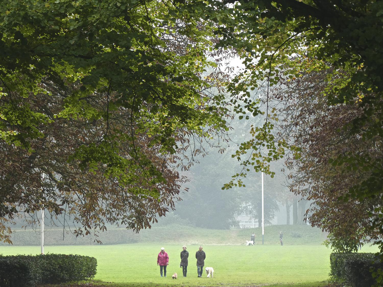 De Arena, een cirkel van gras omzoomd door haagbeuken en kastanjebomen