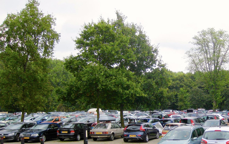 De parkeerplaats bij de hoofdentree