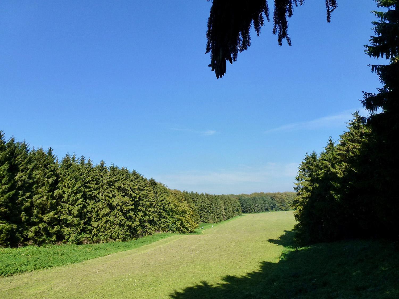 In 1970 zijn rond de Heuvel de laatste bomen geplant. Pas toen was het Bos af