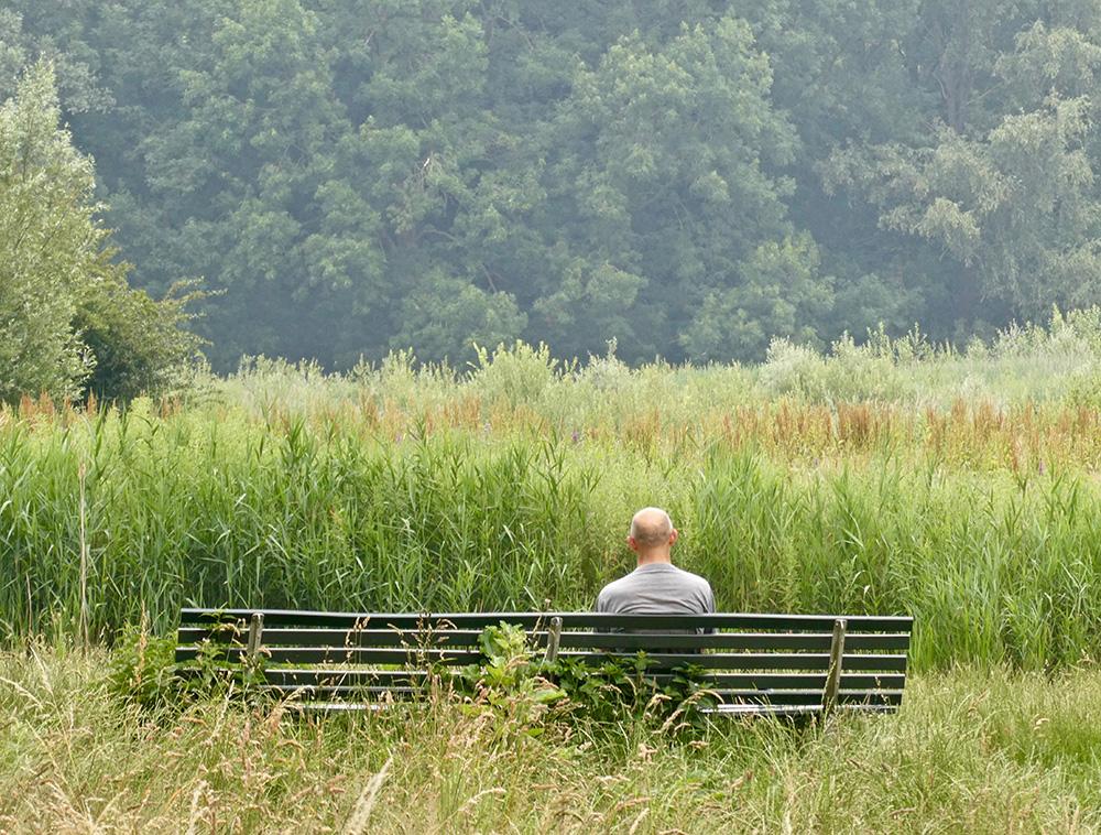 Volgens het onderzoek komen er minder bezoekers naar het Bos