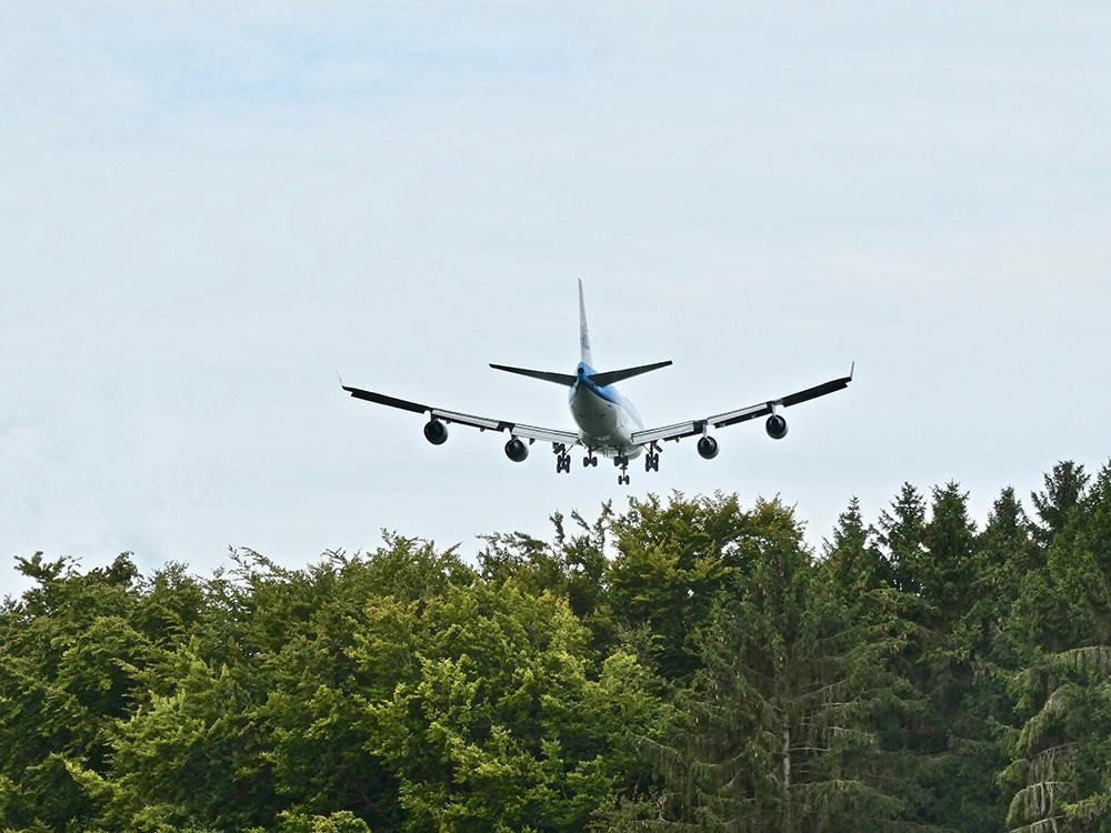 Vliegtuigen zijn niet populair in het Bos