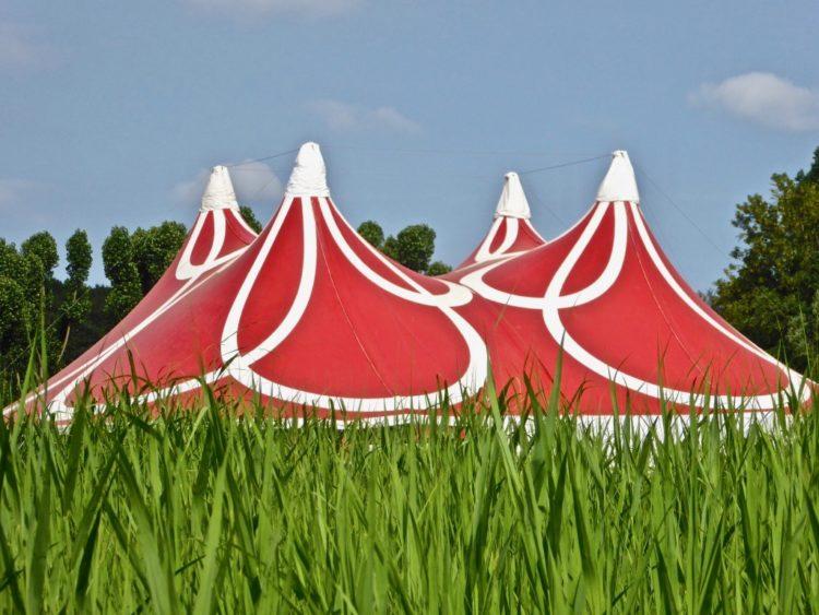 Er zijn 5 festivals verdeeld over 12 dagen