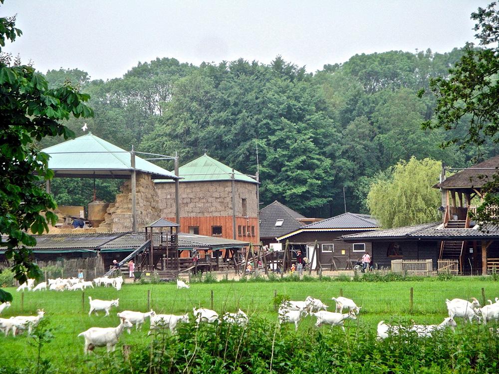 De Geitenboerderij is per 1 juni weer open voor bezoek