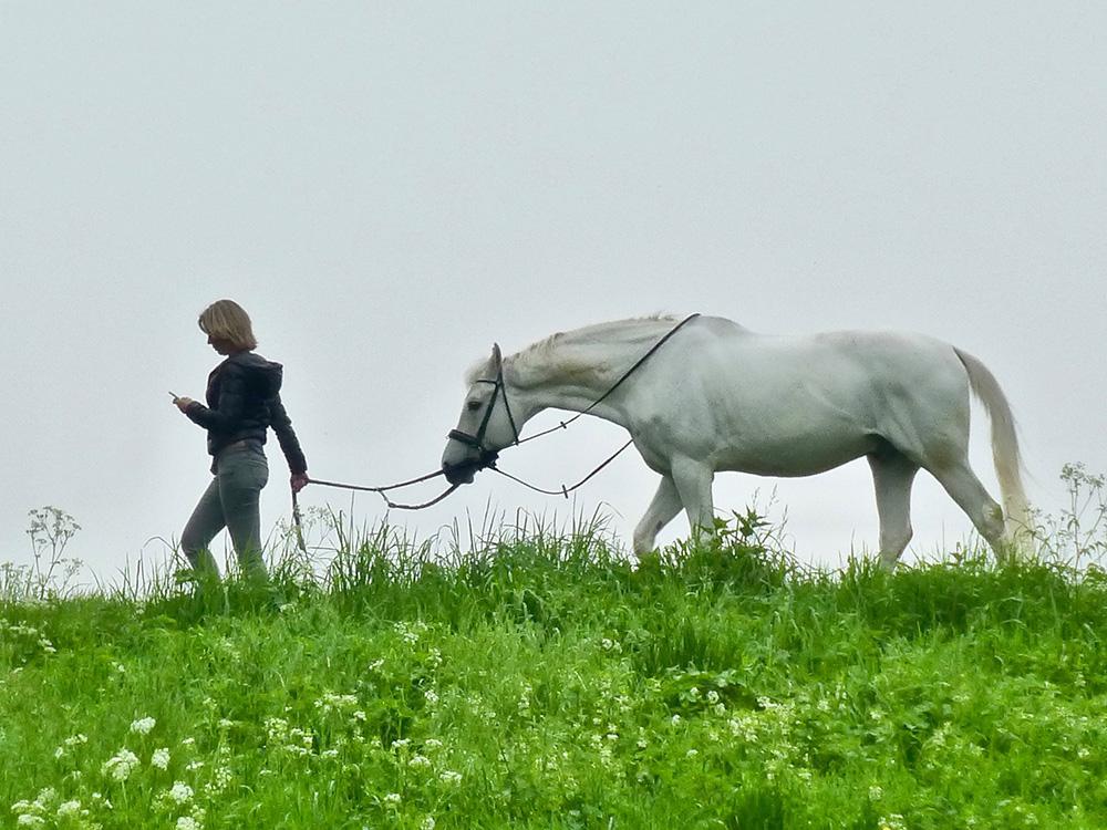 Appen tijdens het paardrijden. (Overigens: waar is het zadel?)