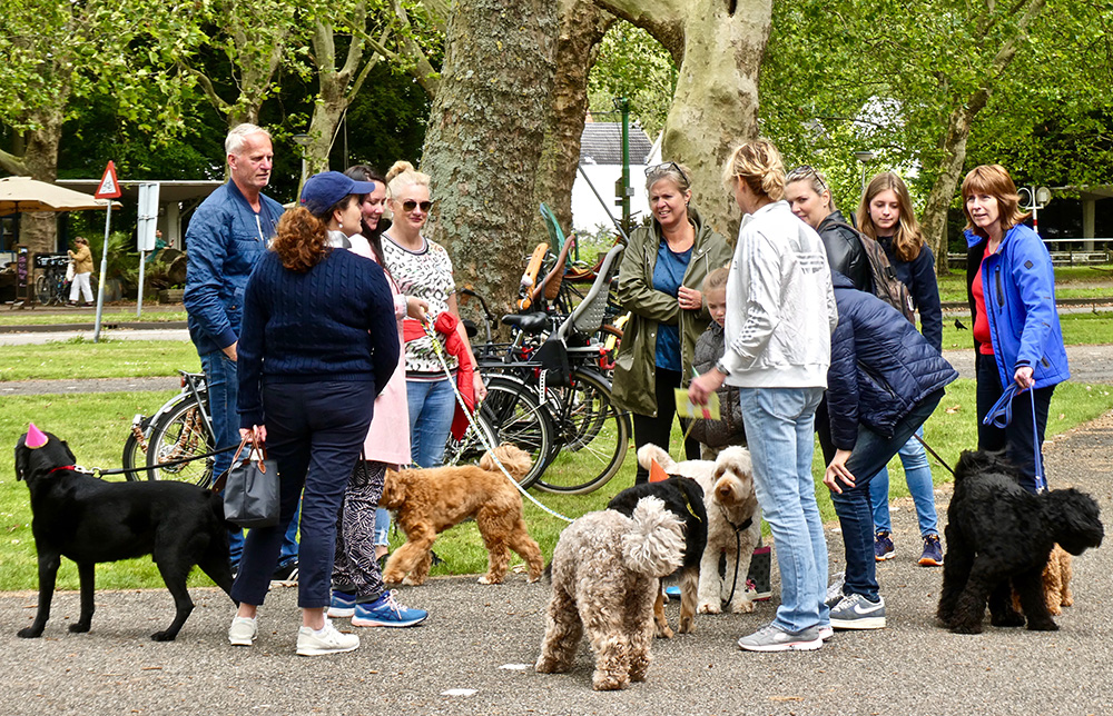 Honden brengen de mensen dichter bij elkaar