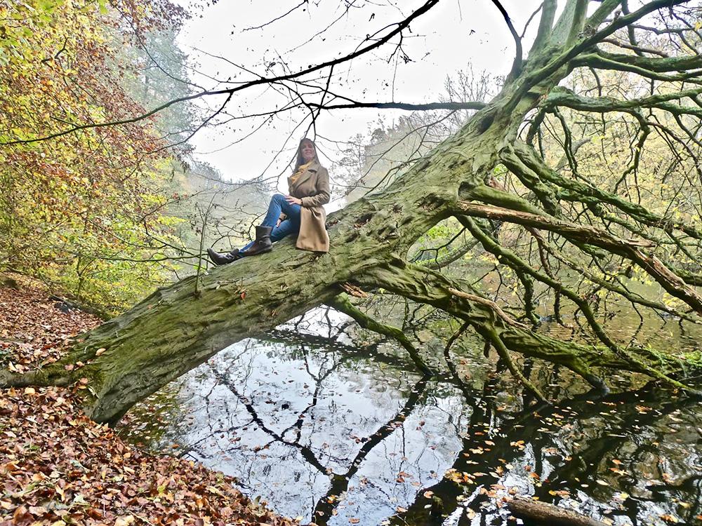 Een levend standbeeld op een overhangende boom