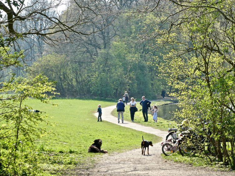 Het Bos op z'n best. Groen, water, wandelaars, kinderen, honden en fietsers.